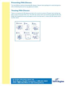 fifth+disease_Page_2